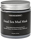 Pure Body Naturals Dead Sea Mud Mask for Face and Body, Purifying Face Mask for Acne,...
